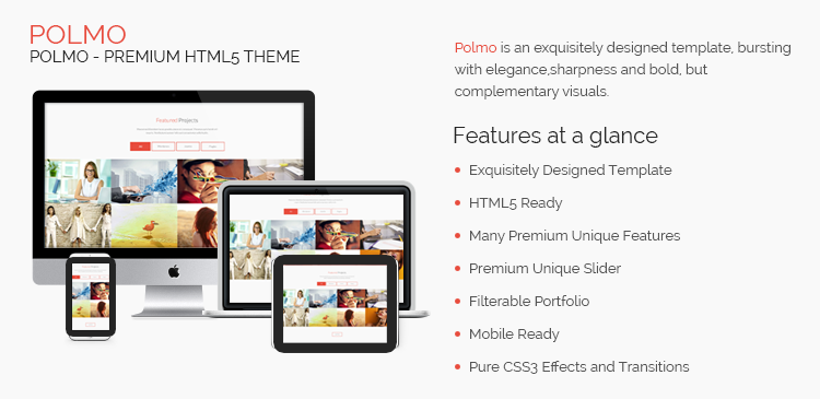 POLMO HTML5 Free Website Template