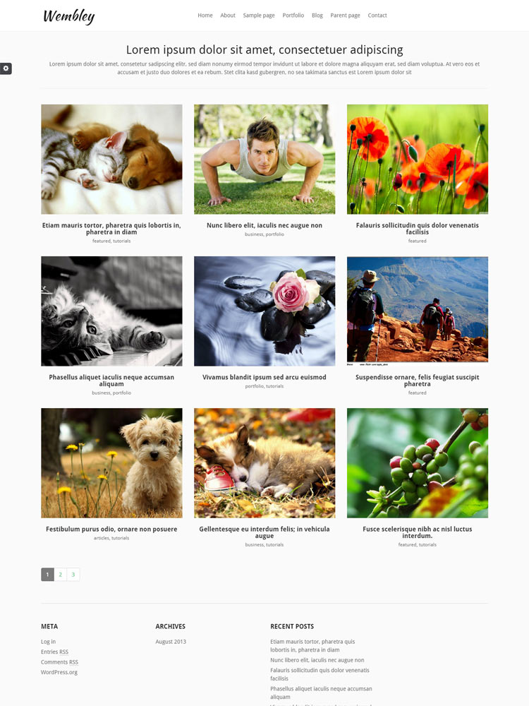 Wembley Free WordPress Themes of 2015