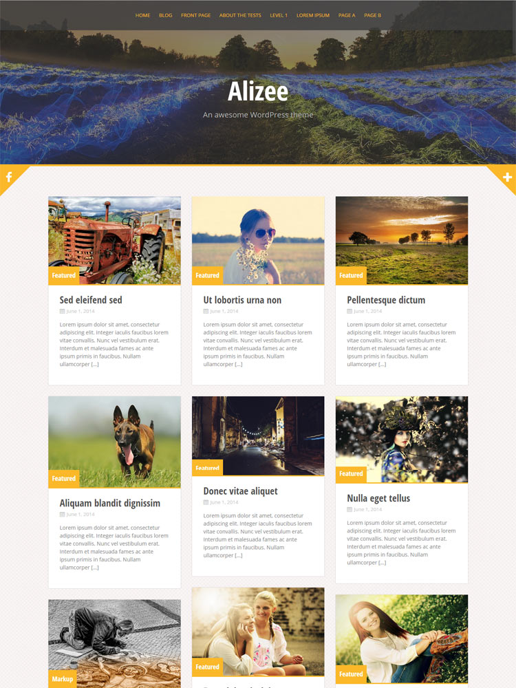 alizee Free WordPress Themes of 2015