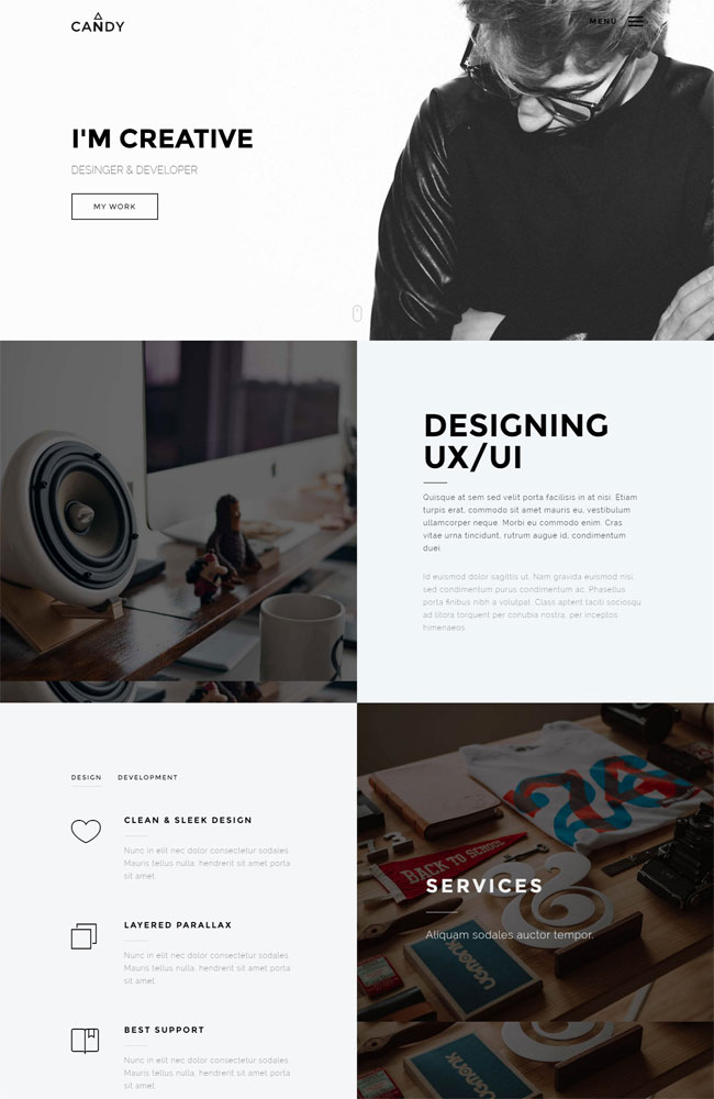 Candy One & Multi Page Best Portfolio WordPress Themes