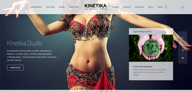 Kinetika WordPress Photography Themes 2016