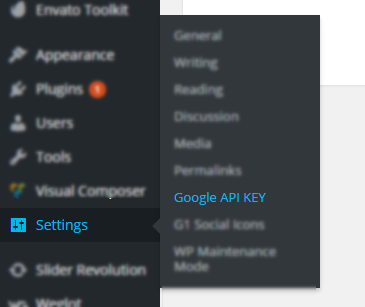 Fix API KEY for Google Maps