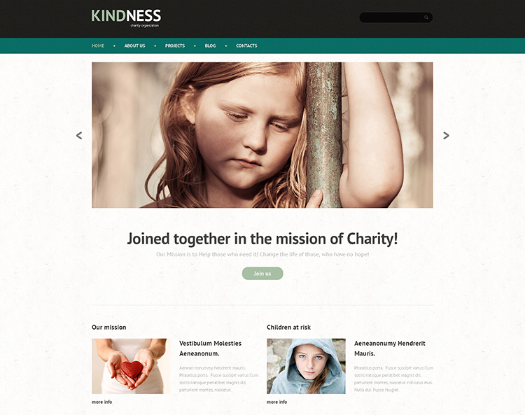 KindNess Child Charity WordPress Theme