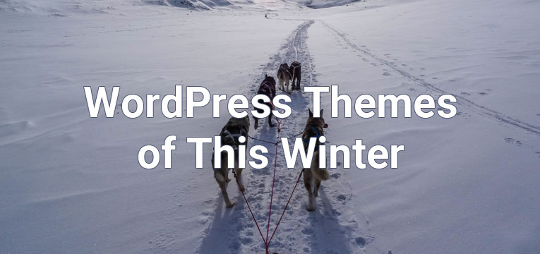 WordPress Themes of this winter