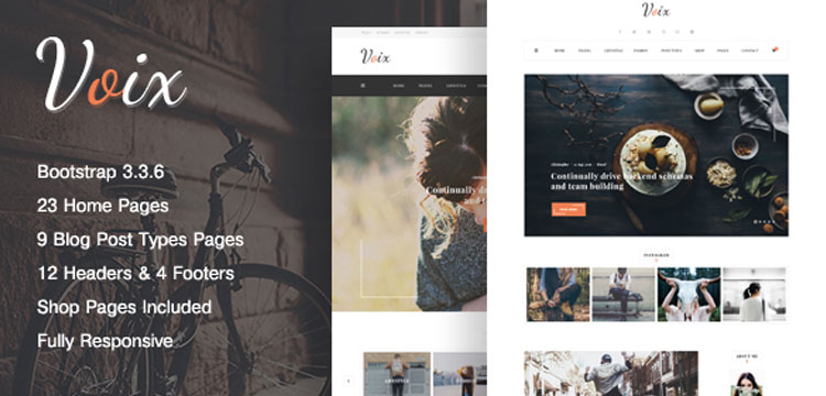 Voix Website Template
