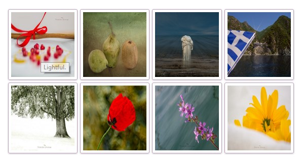 Grid View Flickr Pro Plugin