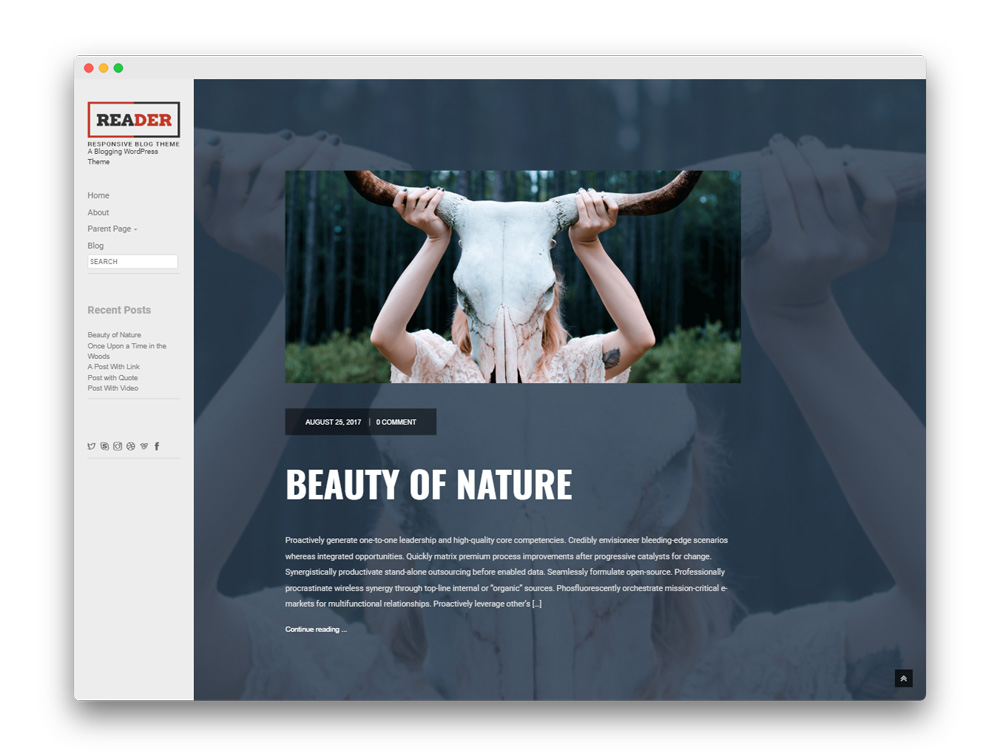 Reader Blogging WordPress Theme