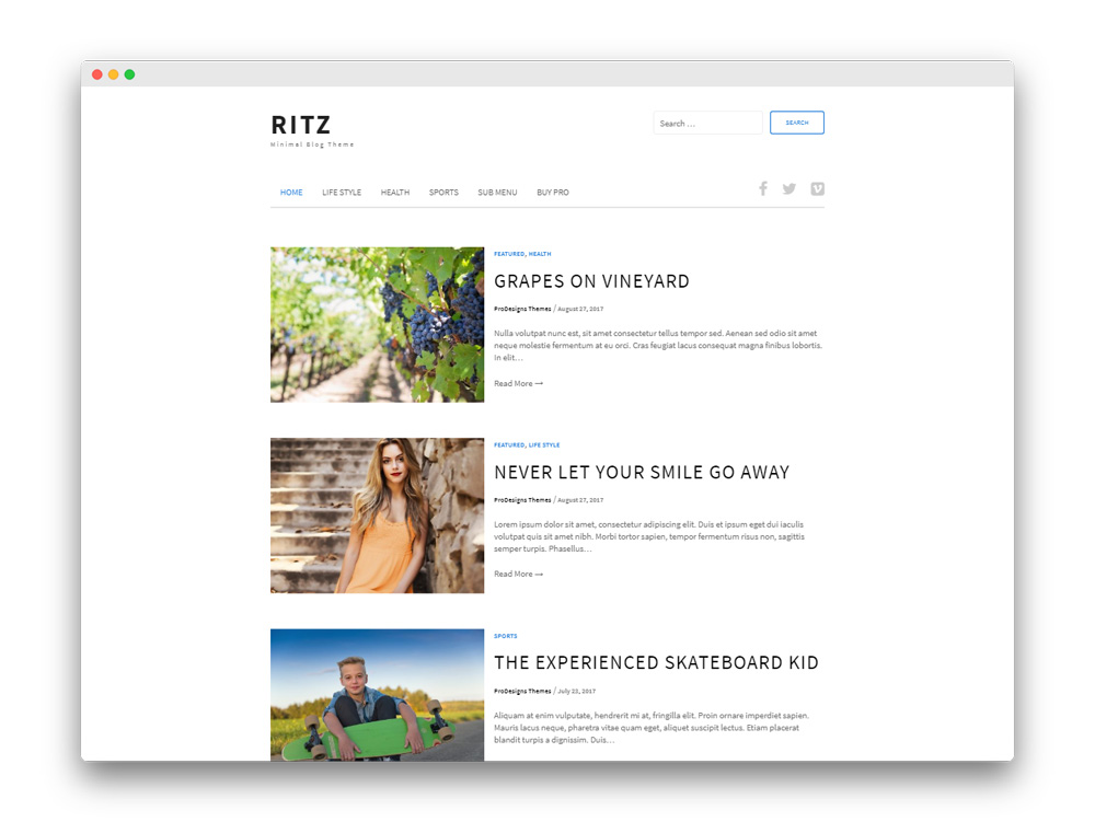 Ritz Free Blogging WP Theme