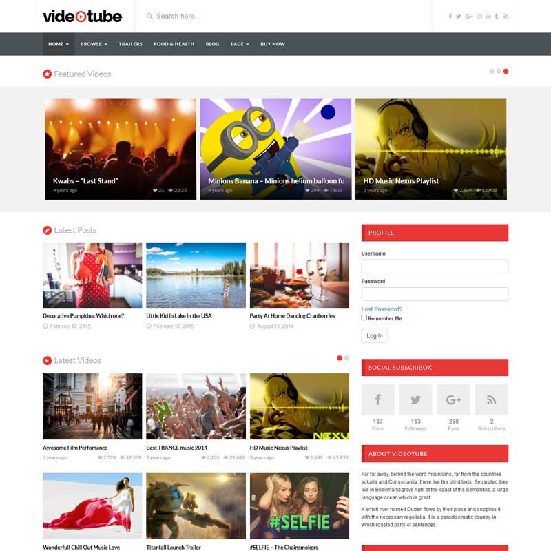 Video Tube Theme