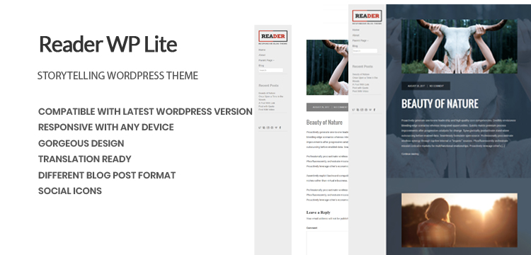 reader wp lite banner