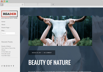 Reader Lite Free WordPress Theme